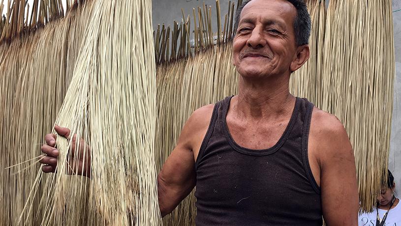 toquilla straw panama hats